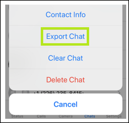 Export chat