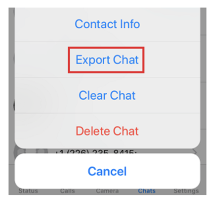 Tap on Export Chat