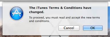 agree to terms and conditions