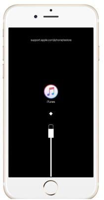 iPhone 8 or 8 plus