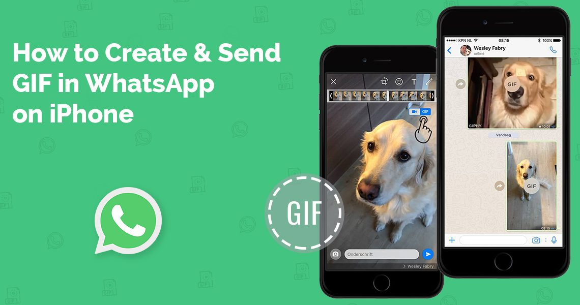 How to Create & Send GIF in WhatsApp on iPhone