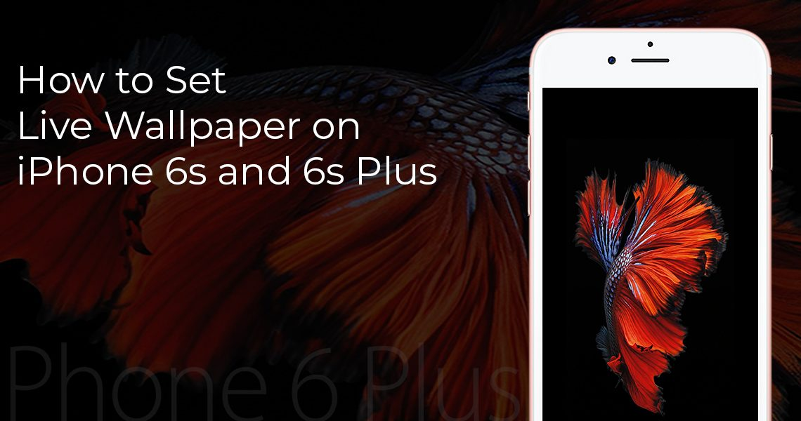 How to Set Live Wallpaper on iPhone 6s