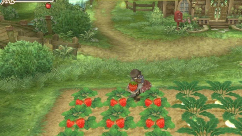 leveling system work in Rune Factory