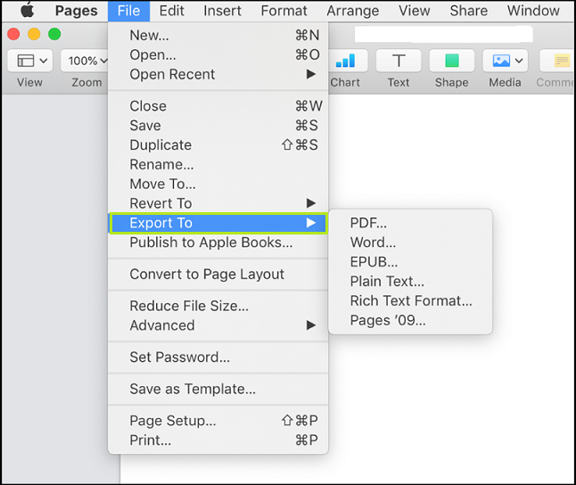 Convert a Pages document in Pages