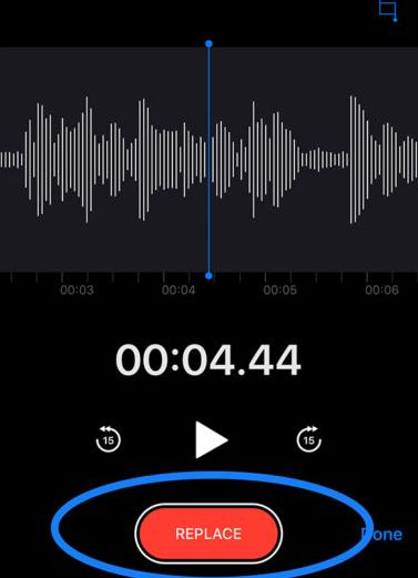 Record the audio
