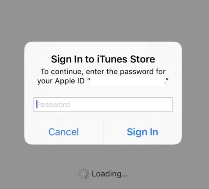 Apple ID signin