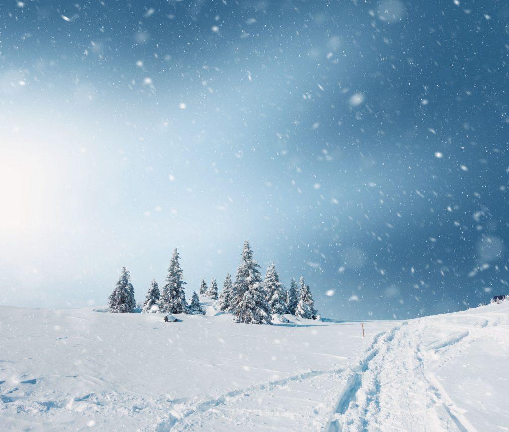 Feeling the Blue in Winter Season